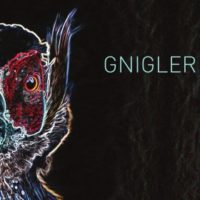 """Gnigler"" listen closely, 2014"